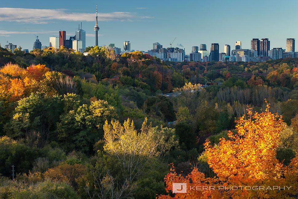 Toronto Skyline Jay Kerr