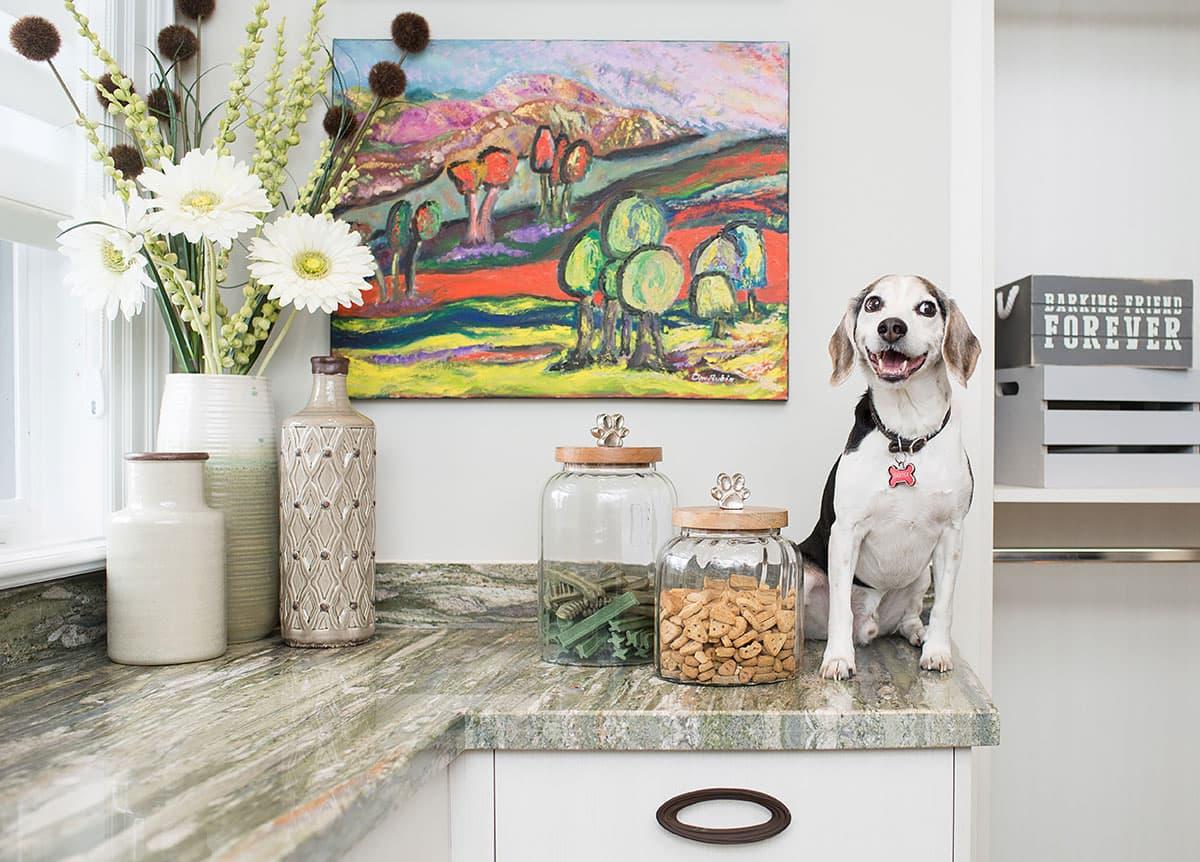 LG WashTower™ Baxter the dog on the quartz counter