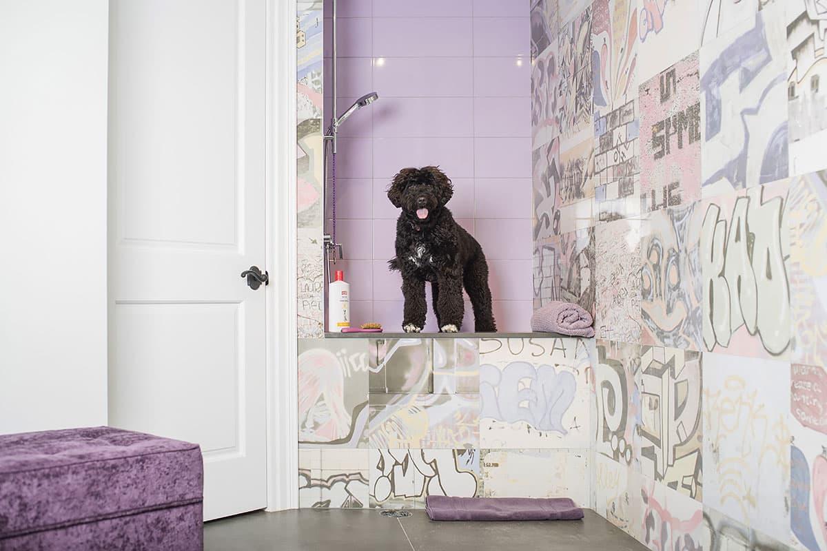 Hottest Laundry Room design trends dog-washing station
